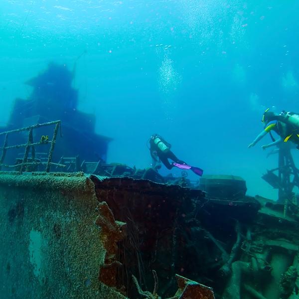 해양조사 및 검사 서비스